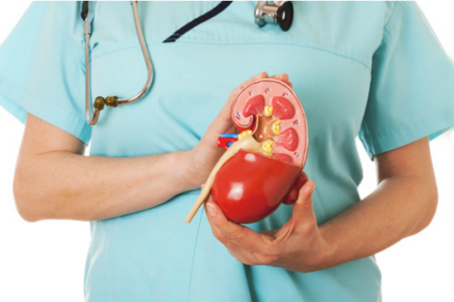 tratamiento de calculos renales